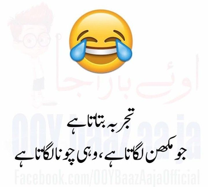 Pink Rose Funny Quotes Funny Posts Sufi Poetry