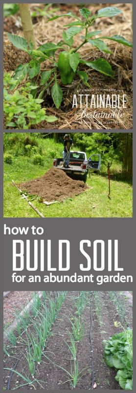 Creating good garden soil is crucial if you want a robust vegetable garden. Mulch, compost, and manure are all key elements. Garden ~ prepping ~ homestead ~ grow your own ~ seeds ~ vegetables