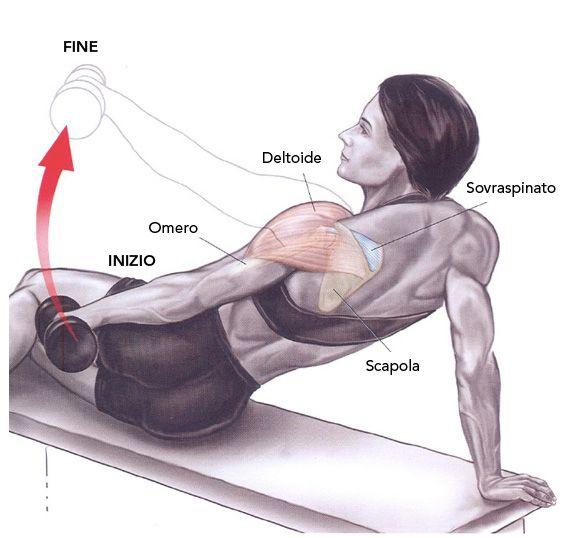 Esercizi per le spalle – Alzate laterali inclinati - Logon Prozis