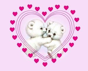 imagenes de cumpleaños para mi amor-605581_dqmkretsrlqgnej.jpg: Birthday, Su Cumpleaño, Imagenes De Cumpleaño, Birthday For