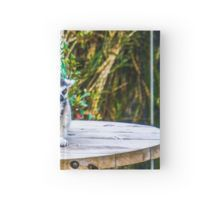 A pair of Orange-Eyed Ring-Tailed Lemurs Hardcover Journal