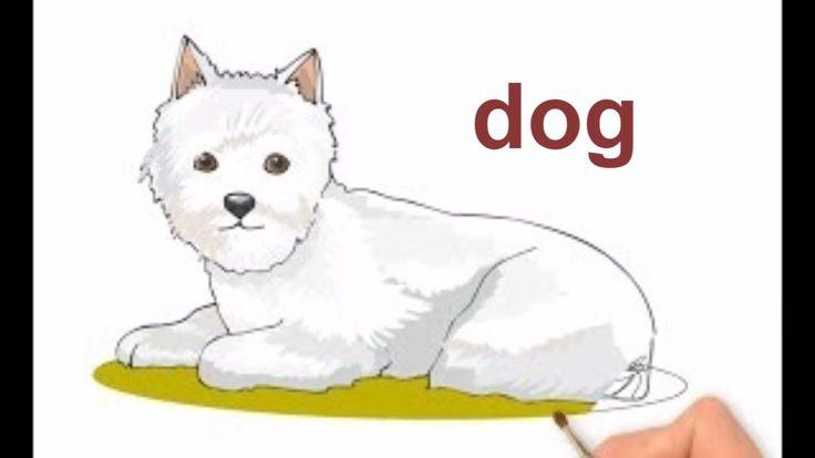 Як намалювати собаку,  як намалювати собаку крок за кроком, #drawing, #draw