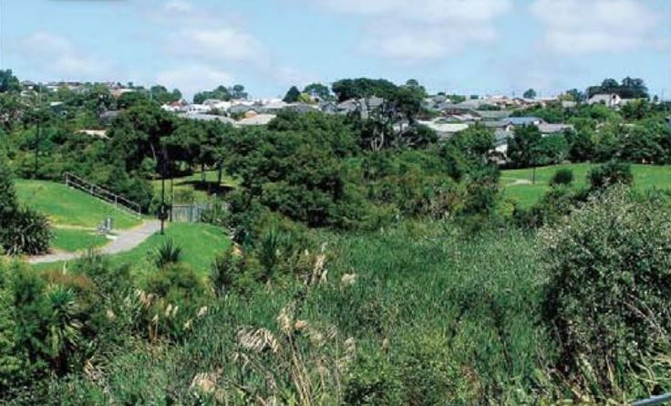 Rush Creek Reserve, adjacent to Westgate shopping centre at Massey, West Auckland, NZ. Photo c.2010.