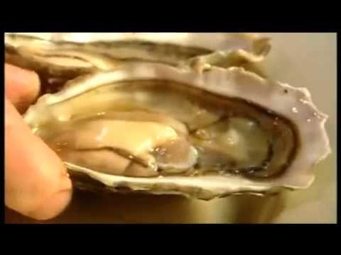 Rick Stein s French Odyssey Episode 01