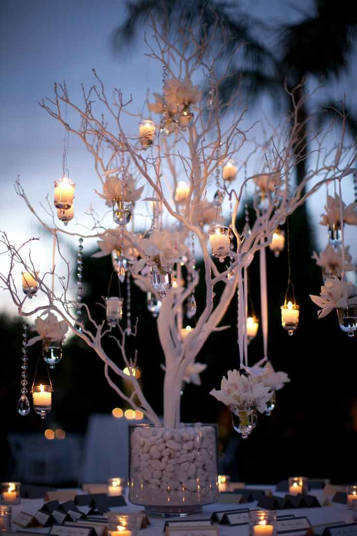 Beautiful seating card display table with a white tree and hanging candles and floral