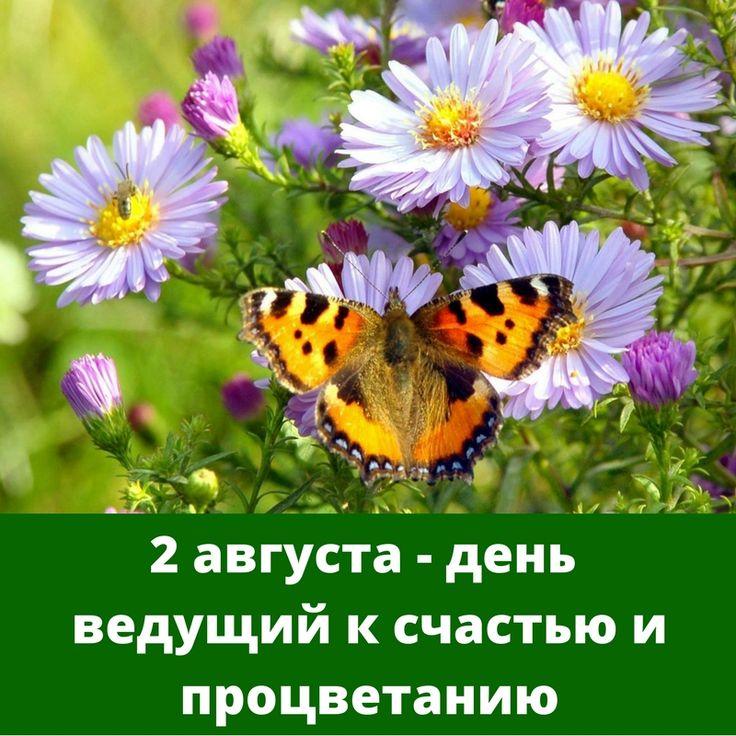 Прогноз на среду, 2 августа 2017  10 – й Лунный день до 11:44. Этот день дает четкость и ясность, результаты, ведет к состоянию расслабления, безмятежности и счастья (см. описание в посте на 1 августа).  11 – й Лунный день после 11:44. Этот день ведет к счастью, процветанию и добру, дает славу.  В этот день благоприятна следующая деятельность: •  религиозная деятельность (ритуалы, поклонения и т.д.) •  создание, дизайн одежды, платьев •  декоративные работы, украшения •  живопись…