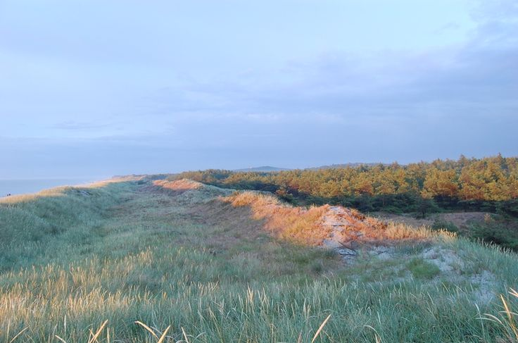 Slowinski National Park , Baltic, Poland