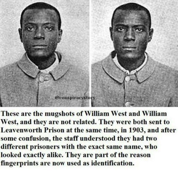 Fascinating.