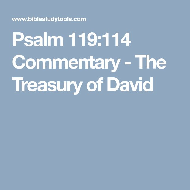 Psalm 119:114 Commentary - The Treasury of David