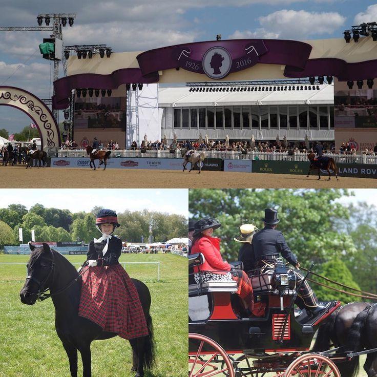 ロイヤルウィンザーホースショー(Royal Windsor Horse Show)  Photo by:富岡秀次(RSVP Butlers Ltd)  DAKS公式HP「英国情報」でもご紹介しています。URL:http://www.daks-japan.com/englishinfo/vol40.html