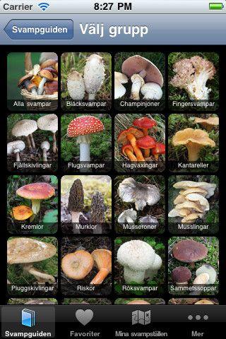 Med svampguiden har du med dig ett uppslagsverk av de vanligaste svamparna. 200 arter finns beskrivna i 600 bilder. I anslutning till varje artbeskrivning finns bilder samt länkar till förväxlingssvampar så du enkelt kan se vilka svampar som är snarlika.