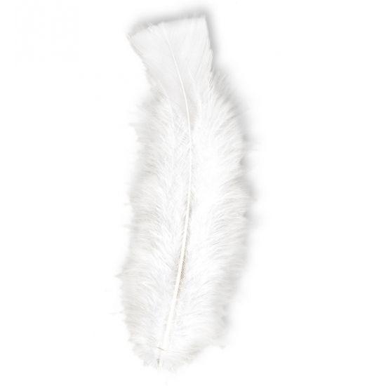 50 stuks witte veertjes. Mooie veren in sereen wit, voor bijvoorbeeld decoratieve of knutseldoeleinden. Deze witte veren zijn maximaal 17 cm groot. De mogelijkheden zijn eindeloos met deze mooie witte veren. Ook verkrijgbaar in andere mooie kleuren!