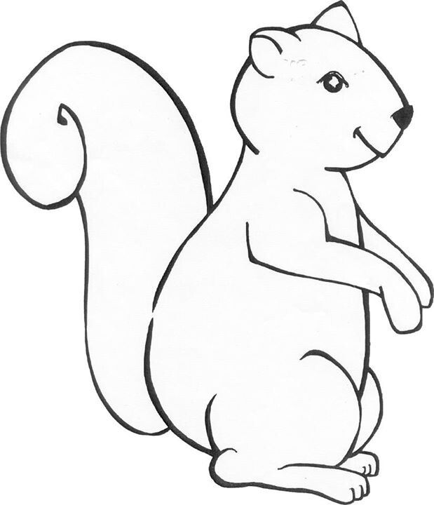 Squirrel Coloring Page Color Makes The World A Little