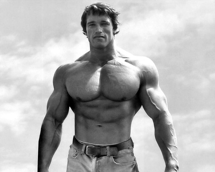bodybilder | ... of bodybuilder, click below photo gallery and save it to your PC