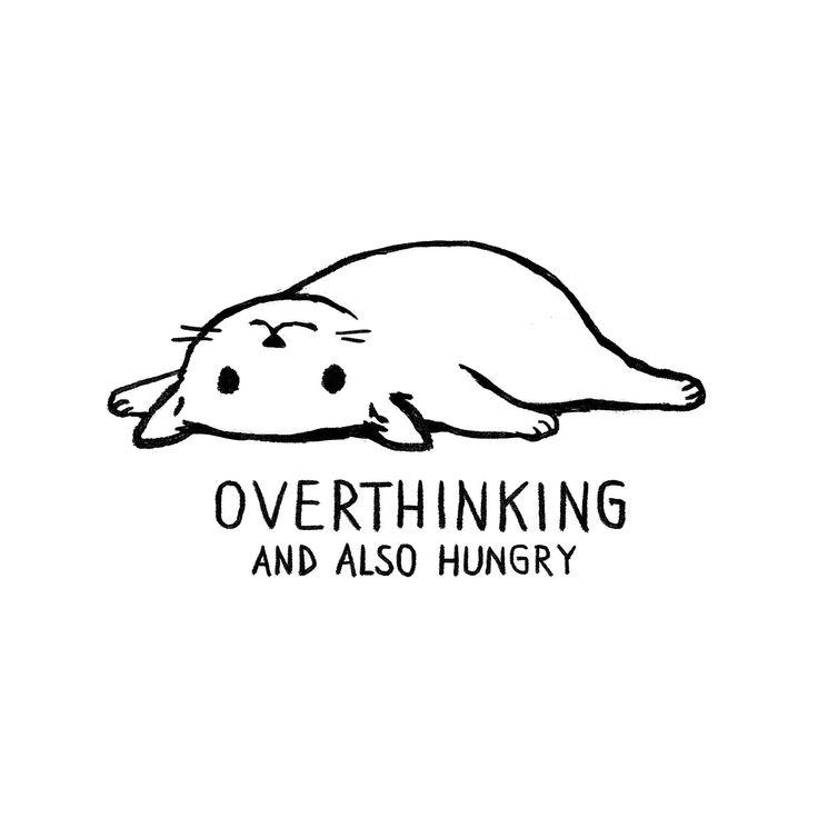 Anxiety – Feline