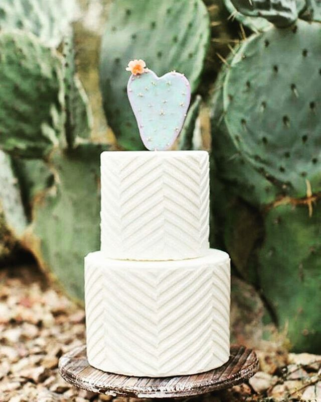WOW 😁❤The #hipster weddingcake. Love it ! Cactus 🌵🎂🎆🎉😍 #boho #cake #weddingcake #glamour #lifestyle #instawedding #blogger #instablogger #instadaily #weddingplanner #instawedding #weddingvintage #weddinginspiration #eventplanner #weddingdecor #wedding #weddingblog  #decoration #marriage #huwelijk #trouwen #verloofd #engaged #engagement #ring #love #d_d_event #gent #brussel #belgie #eventprofsuk #eventprofs #meetingplanner #meetingplanner #meetingprofs #inspiration #popular #trending…