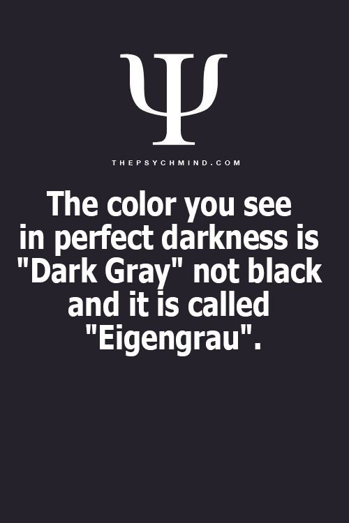 "The color you see in perfect darkness is ""Dark Gray"" not Black and it is called ""Eigengrau"""