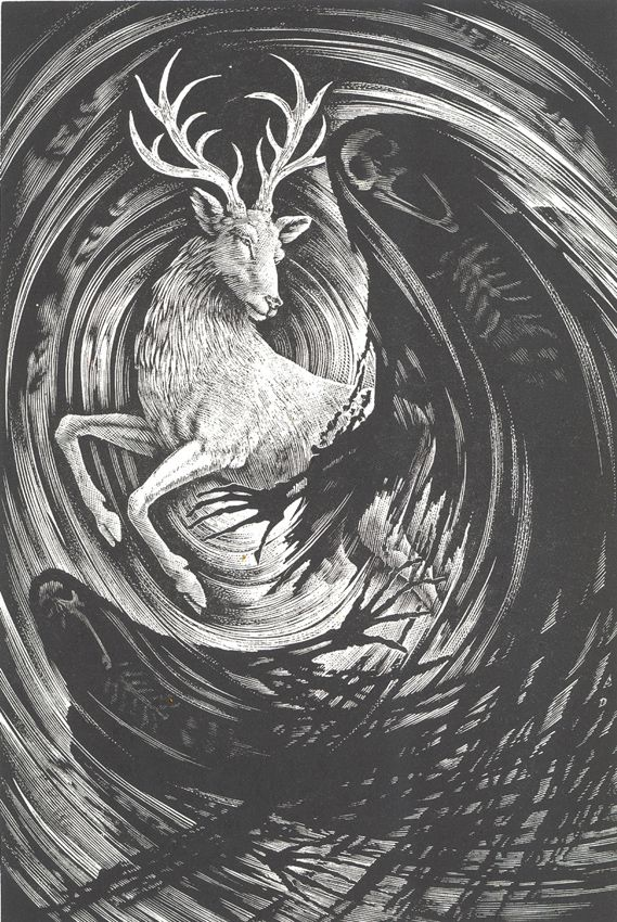 illustrations created for an upcoming repackage of the Harry Potter series... illustrations by Andrew Davidson...