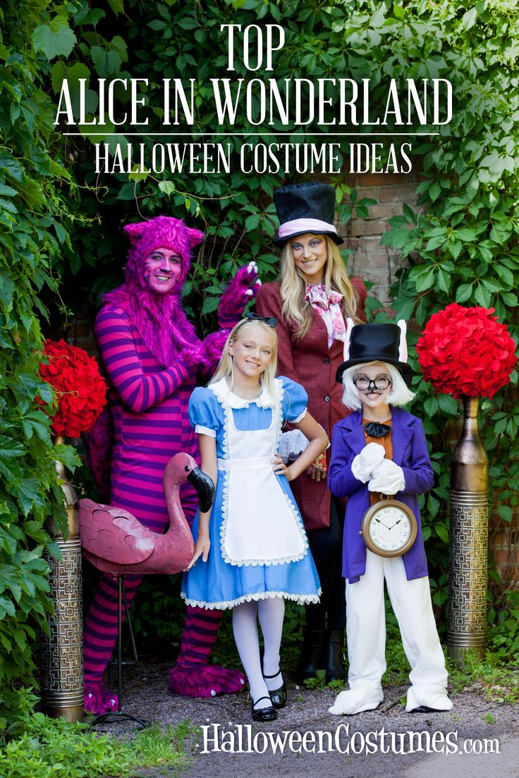 Exclusive online deals on the most popular Alice in Wonderland costumes of 2016! Find the perfect costume for less!