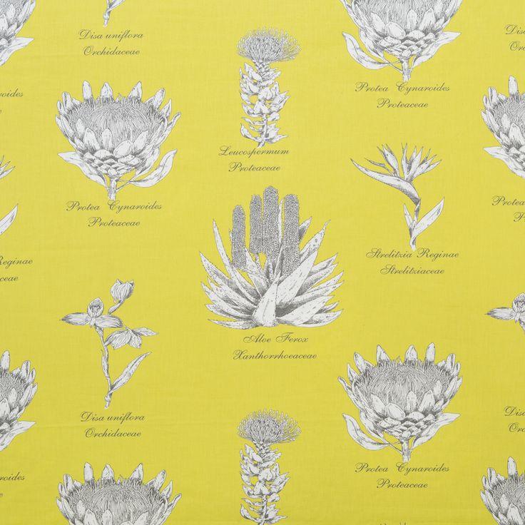 Botanical Protea www.constaniafabrics.co.za