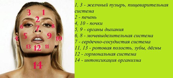 Ваша кожа - зеркало здоровья. Та или иная область лица отвечает за состояние конкретного органа или системы органов