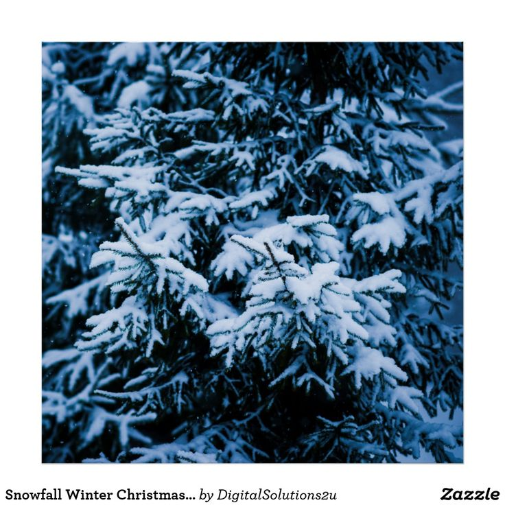 Snowfall Winter Christmas Tree Poster