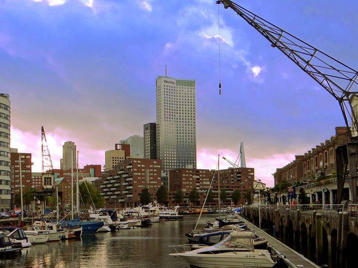 De Entrepothaven op de Kop van Zuid met op de achtergrond nog altijd het hoogste gebouw van Nederland, De Maastoren.