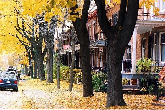 Sweet Outremont