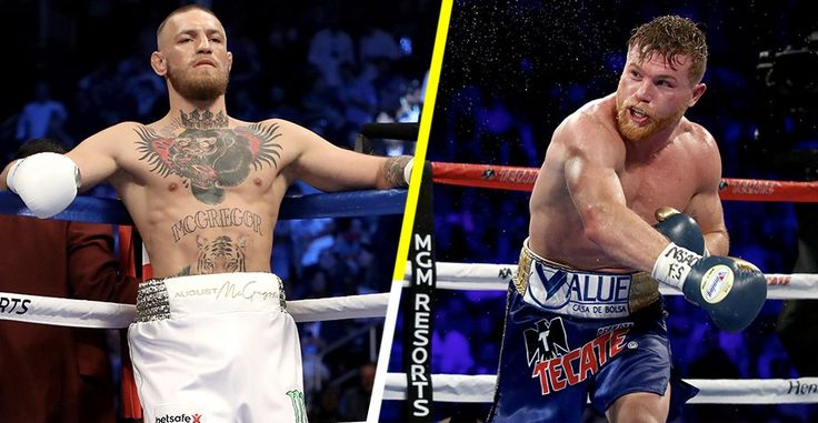 Saúl Canelo Álvarez gave us a great fight against Gennady Golovkin. The Jalisco man showed the world that he is more than a boxer wit...