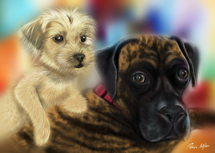 Digital art, painting of two cute dogs.