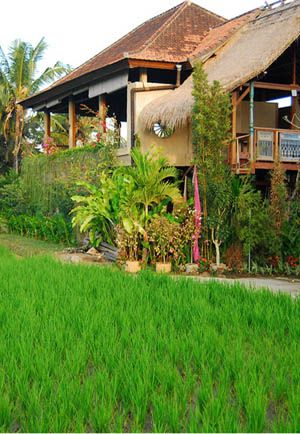 Yoga Barn in Ubud. They seem to have some interesting non-yoga events and classes.