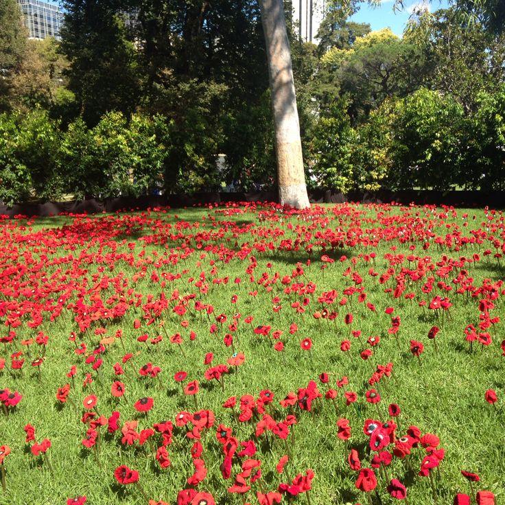100 years of ANZAC | 2015 Melbourne International Flower & Garden Show | Carlton Gardens | Photo: Danna Cleugh | http://melbflowershow.com.au
