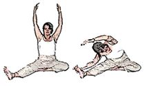 The Wood stretches from the Makko Ho exercises