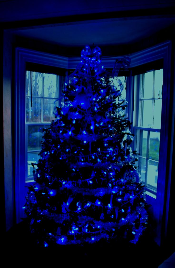 17 best ideas about blue christmas lights on pinterest for Blue decoration xmas tree
