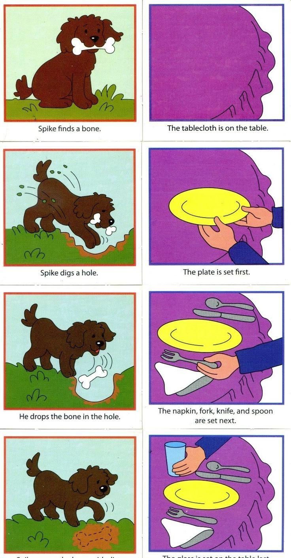 Cão enterra osso e pôr a mesa