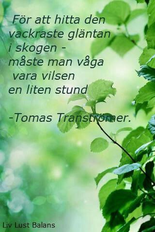 Tomas Tranströmer - Nobel prize in literature