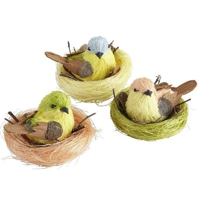 Natural Birds with Nest