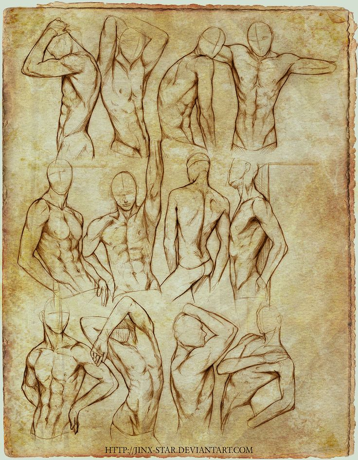 +MALE BODY STUDY II+ by jinx-star.deviantart.com on @deviantART