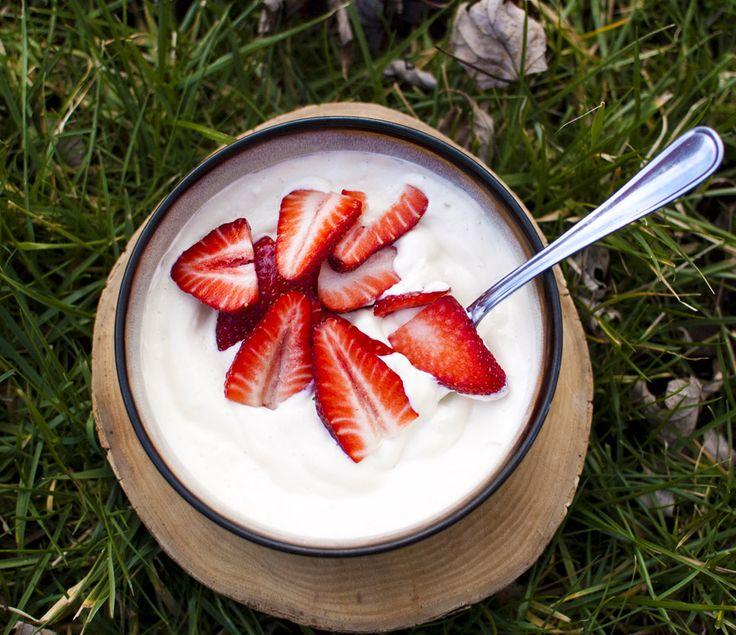 44 Best Raw Vegan Yogurts Images On Pinterest Vegan