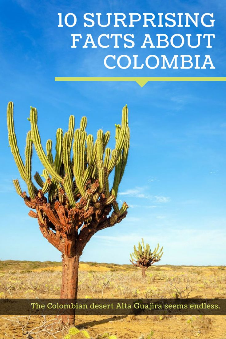 Moon Travel explores 10 surprising facts about Colombia with author Andrew Dier.