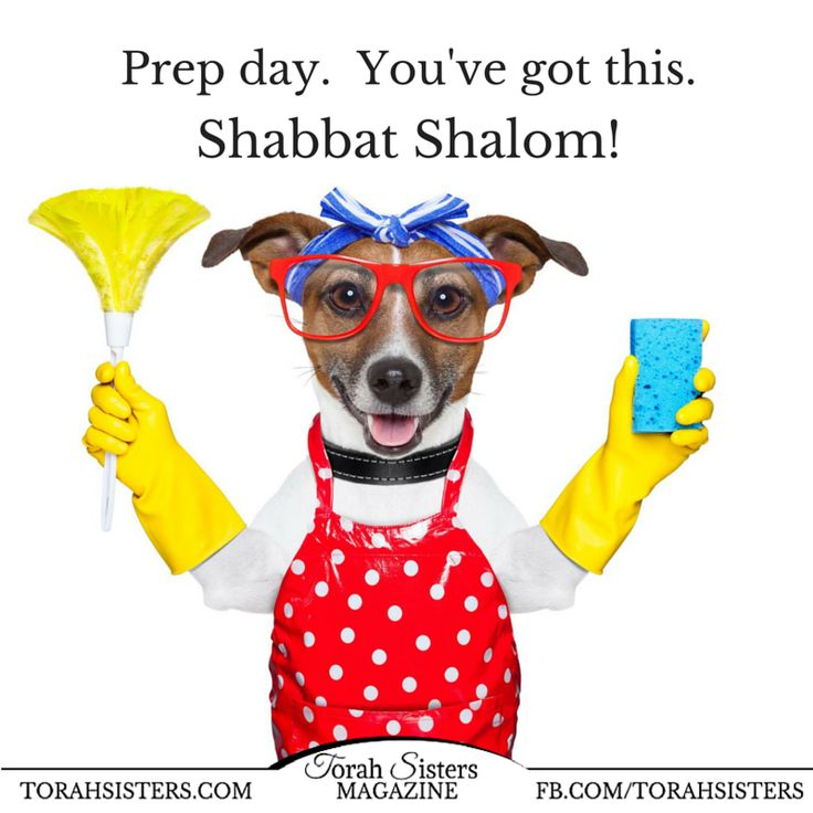 Happy prep day from Torah Sisters Magazine!