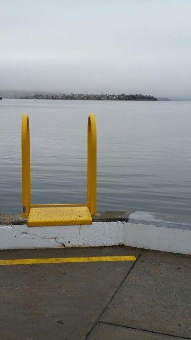 Yellow. Hobart wharf.