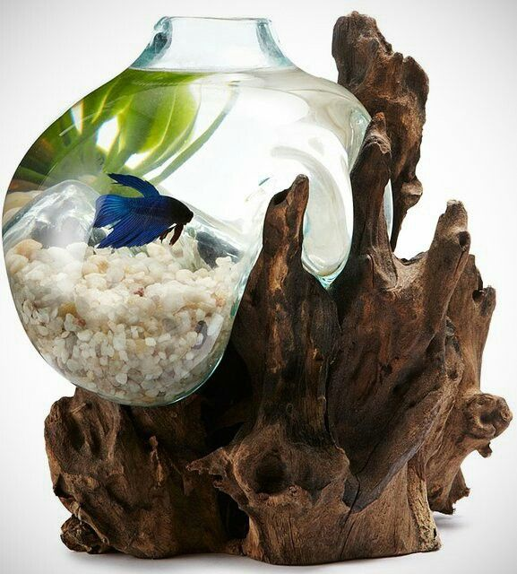 Fish bowl that adds to the decor instead of detracting