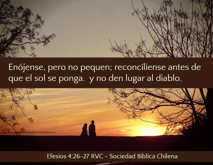 Versículos de la Biblia acerca del Enojo - Sociedad Bíblica Chilena