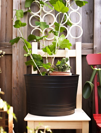 A large planting pot like SOCKER that's  37 cm in diametre can hold smaller pots  to make watering easier.