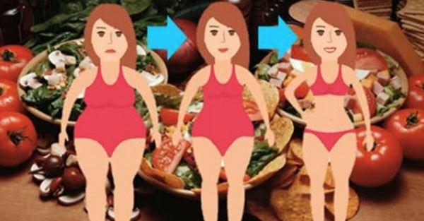 Ecco come funziona la famosa dieta metabolica che fa perdere fino a 10 chili in solo 13 giorni ma non può essere ripetuta prima dei due anni