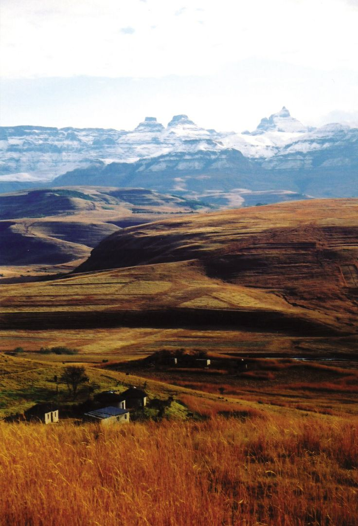 Zulu huts at the foot of the Drakensberg