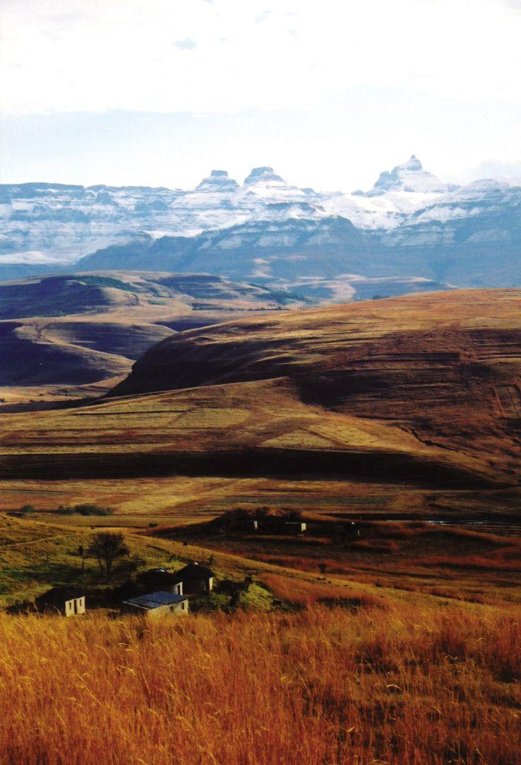Zulu huts at the foot of the Drakensberg