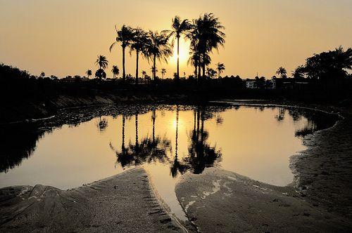 Kololi, The Gambia