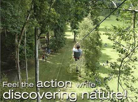 Bali Treetop Adventure Park is a fun activity set in an open air environment for group and family in Indonesia. Open everyday in Bali Botanical Garden, Bedugul. We also provide you with company outing and team building services.